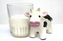 alergia-a-la-proteina-de-la-leche-de-vaca